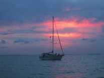 Vela, Biscayne Bay 5-2014