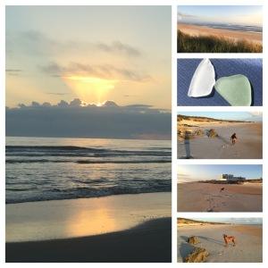 Last sunrise, sea glass and Nyah running circles on Marineland Beach
