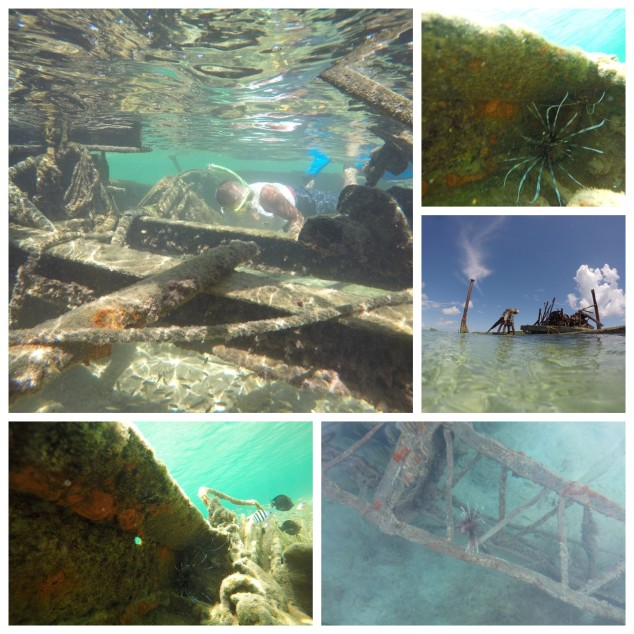 Wreck at Powell Cay.