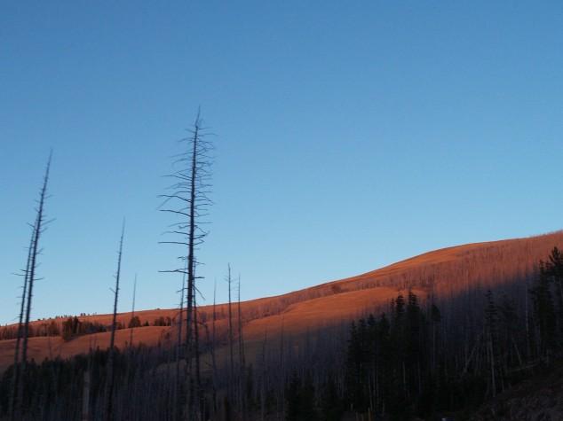 Sunset, Yellowstone National Park