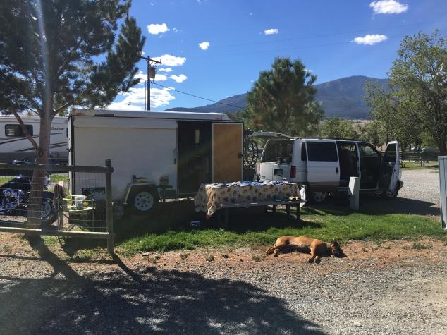Nyah soaking up the Montana sunshine